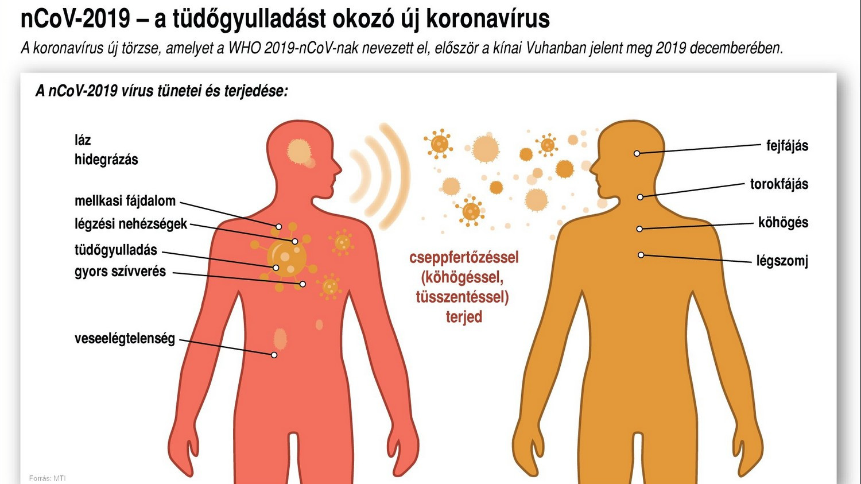 feltételezett fertőző betegség tünetei