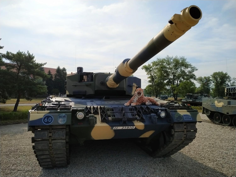 magyar-honvedseg-leopard-2a4-tank-harcko