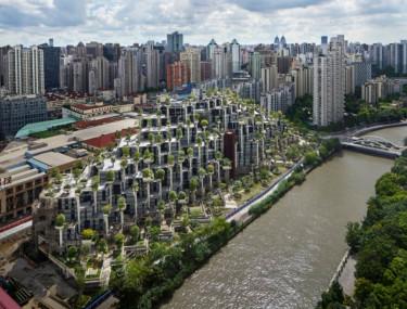 1000 trees - Sanghaj
