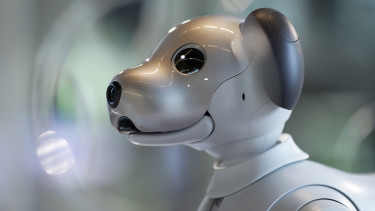 A Sony Corp. 'Aibo' robotic dog sits on display at the company's headquarters in Tokyo, Japan, on Tuesday, July 30, 2019. Photographer: Kiyoshi Ota/Bloomberg via Getty Images