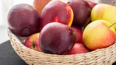Almából készítettek edényeket orosz kutatók
