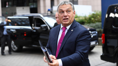 Approval rating of Hungary's ruling Fidesz party jumps