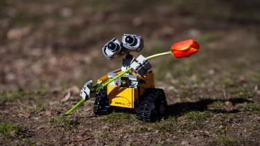 Az emberek többsége elfogadná a robotkollégákat