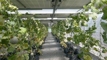 Brutális hatékonyságot értek el a jövő napelemes rendszerével