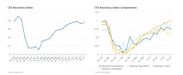 cee recovery