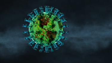covid vilag koronavirus