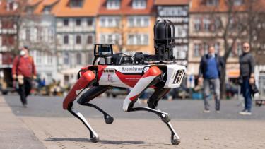 digidig robotkutya rendorseg new york 210430