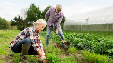 Dolgozó nyugdíjasok shutter