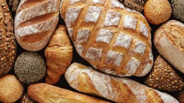 Drágább lehet a kenyér ősszel