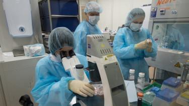 Egy veszélyes laboratóriumi ebolavírussal történt baleset Budapesten - Kórházban a tudós