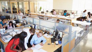 Érdekes ösztönzési módszert talált ki egy vezető a dolgozóinak: legyőzik a piacot vagy elveszi a fiz