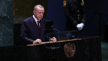 erdogan ensz