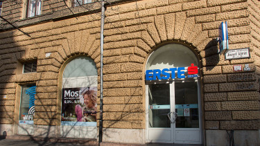 Erste Hungary grows wings, looks for acquisition targets