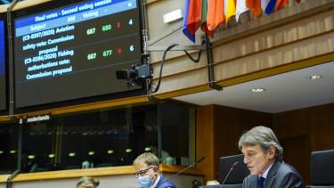 europai parlament adoparadicsom szavazas 210121