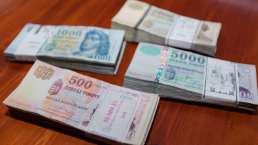 Fate of the Hungarian forint in the balance again this week