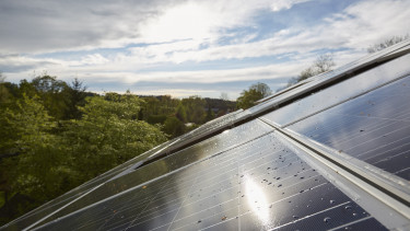 fenntartható napelem zöld