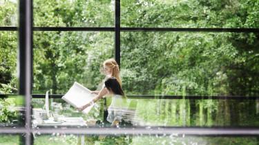 fenntarthatóság zöld iroda munkahely természet