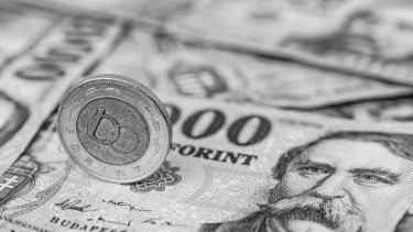 forint zuhanás euró árfolyam