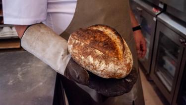 Frissen sült kenyér Wolf András kezében