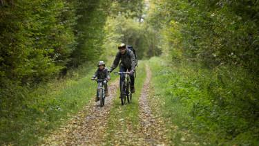getty, kerékpár, erdő, bicikli, kirándulás