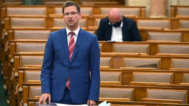 gulyás gergely parlament