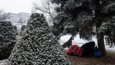 hajléktalanbuda