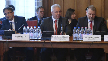 Hungarian gov't does plan changes to judicial system