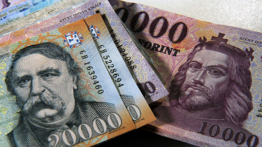 Hungary central bank unworried about price stability