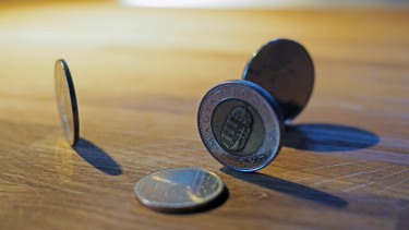 Hungary forint back south of 320 versus euro