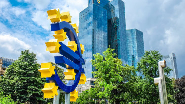 Hungary may only dream of euro adoption for a few years more - ECB