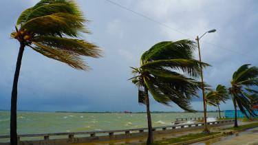 hurrikana