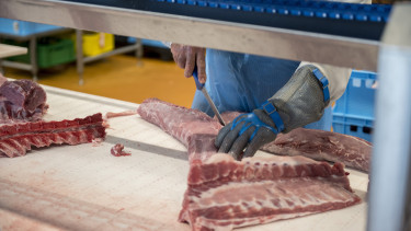hús sertéshús élelmiszeripar