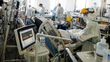 intenziv osztaly semmelweis egyetem koronavírus kórház