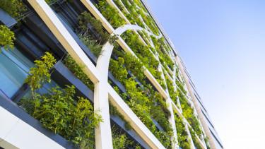 irodaház zöld iroda élőfal növény