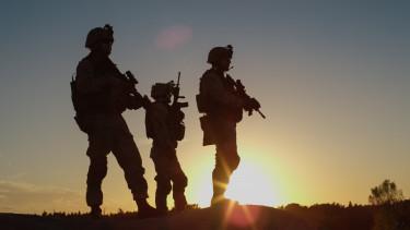 katonák fegyver hadsereg