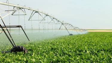 Kezdeményezték a vízhiányos időszak kihirdetését Magyarországon