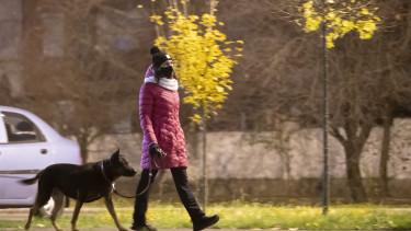 kijárási tilalom kutya sétáltat koronavírus korlátozás