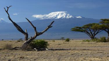 Kilimandzsáró kelet-afrika gleccserek klímaváltozás