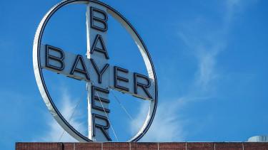 Kimondták: rákkeltő a Bayer gyomirtója