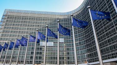 Kiszivárgott: egy európai Apple-t vagy Google-t szeretne az EU