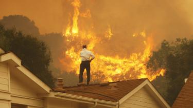 klímaváltozás és a gazdaság kapcsolata, ingatlanok és erdőtüzek