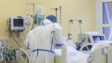 kórház egészségügy lélegeztetőgép koronavírus járvány
