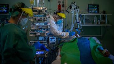 kórházban ápolt lélegeztetőgép koronavírus járvány