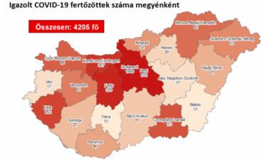 korona térkép