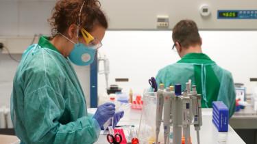 koronavirus gyogyszer ellenszer magyarorszag kutato felfedezes200330