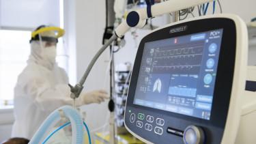 koronavírus halálozás lélegeztetőgép kórház egészségügy