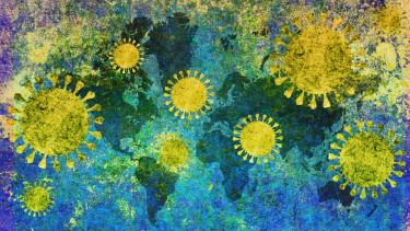 koronavirus vilag