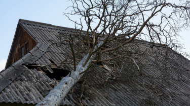 Közel 250 millió forinttal segít viharkárosultaknak a magyar állam