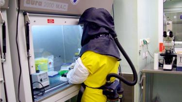 labor koronavírus nnk mti