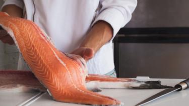 lazac hús hal szakács konyha